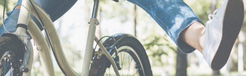 ひたち海浜公園 サイクリング 自転車 持ち込み